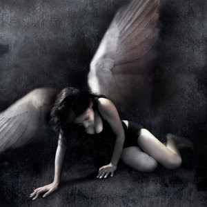 Fallen Angel