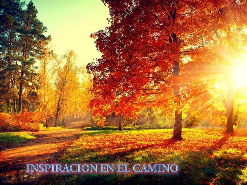INSPIRACION EN EL CAMINO