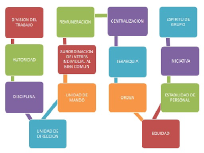 14 principio administrativo: