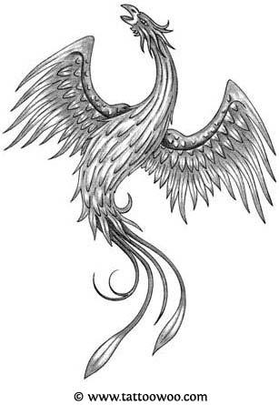 Black and white phoenix tattoos