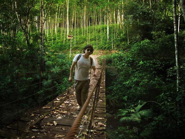 puente colgante selva central viajero