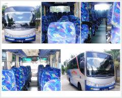 Bis Wisata  AC 25-29 Seat