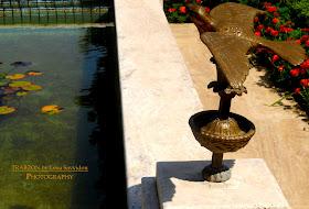Στον κήπο της βίλας Καπαγιαννίδη