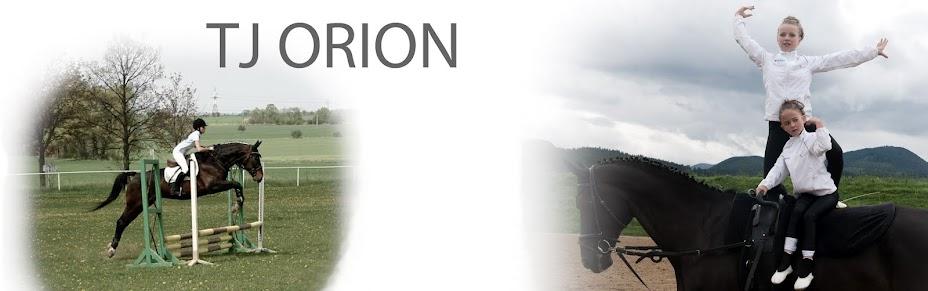 TJ Orion