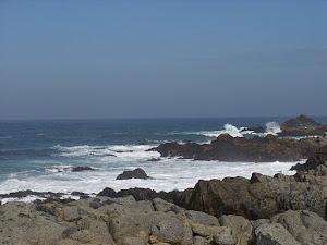 El Mar de Neruda