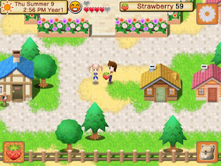 Harvest Moon Seed of Memories