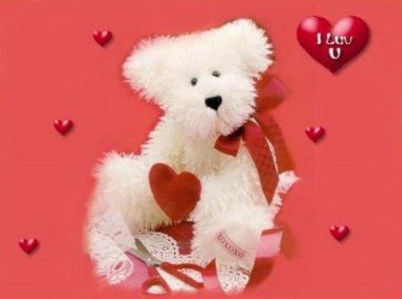 Free Cute Teddy Bear Photos
