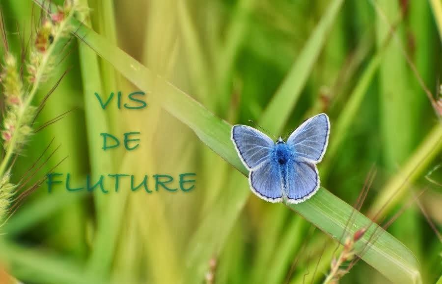 Vis de fluture