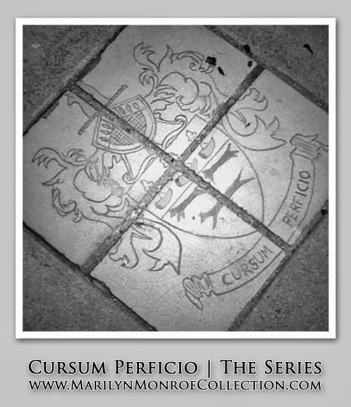 Cursum Perficio (Irene R. Aseijas)