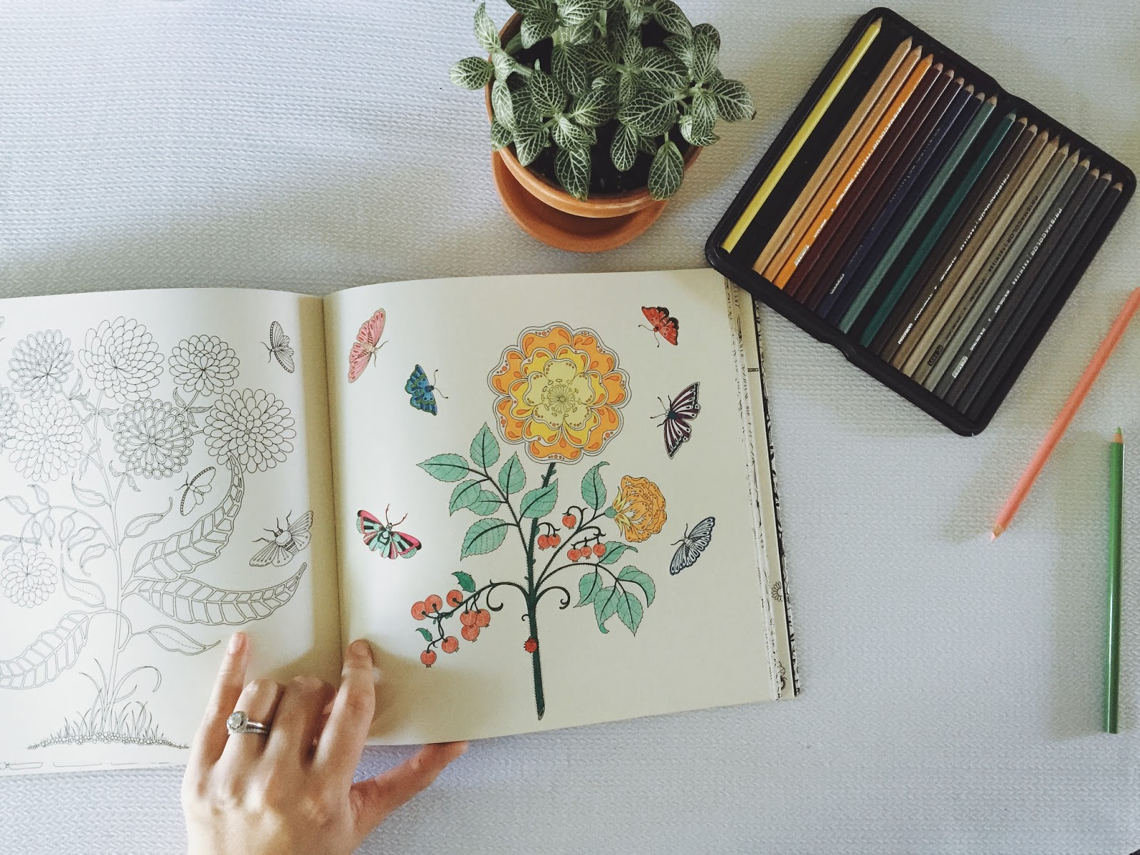 Its Fascinating To See A Page Come Life After Few Brushes Of Color Isnt It I Cant Remember Where First Saw These Incredible Coloring Books