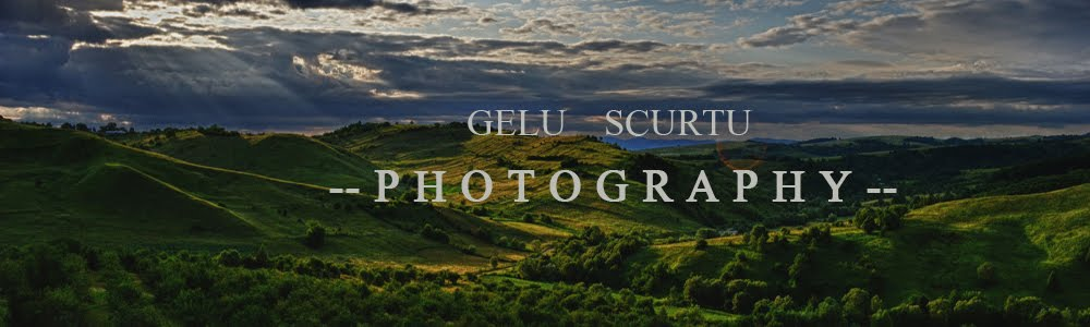Gelu Scurtu Photography