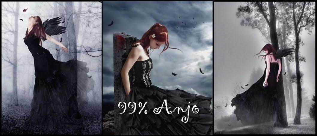 99% Anjo