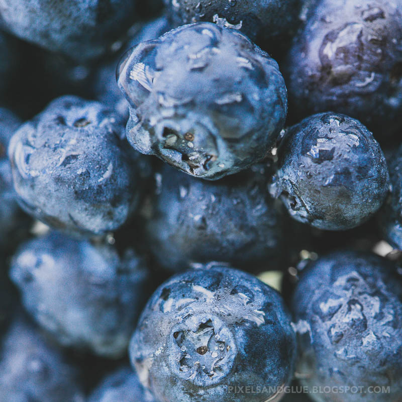 Photo prompts | Blueberries by @pixnglue