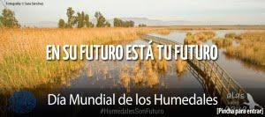 DIA DE LOS HUMEDALES 2016