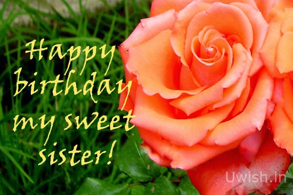 Happy Birthday My sweet Sister e greetings and wishes with a rose.