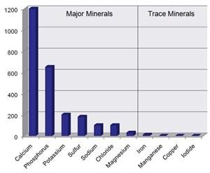 Jenis Mineral
