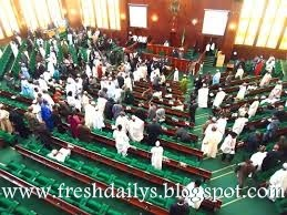 House of Reps Rejects the Removal of Fuel Subsidy
