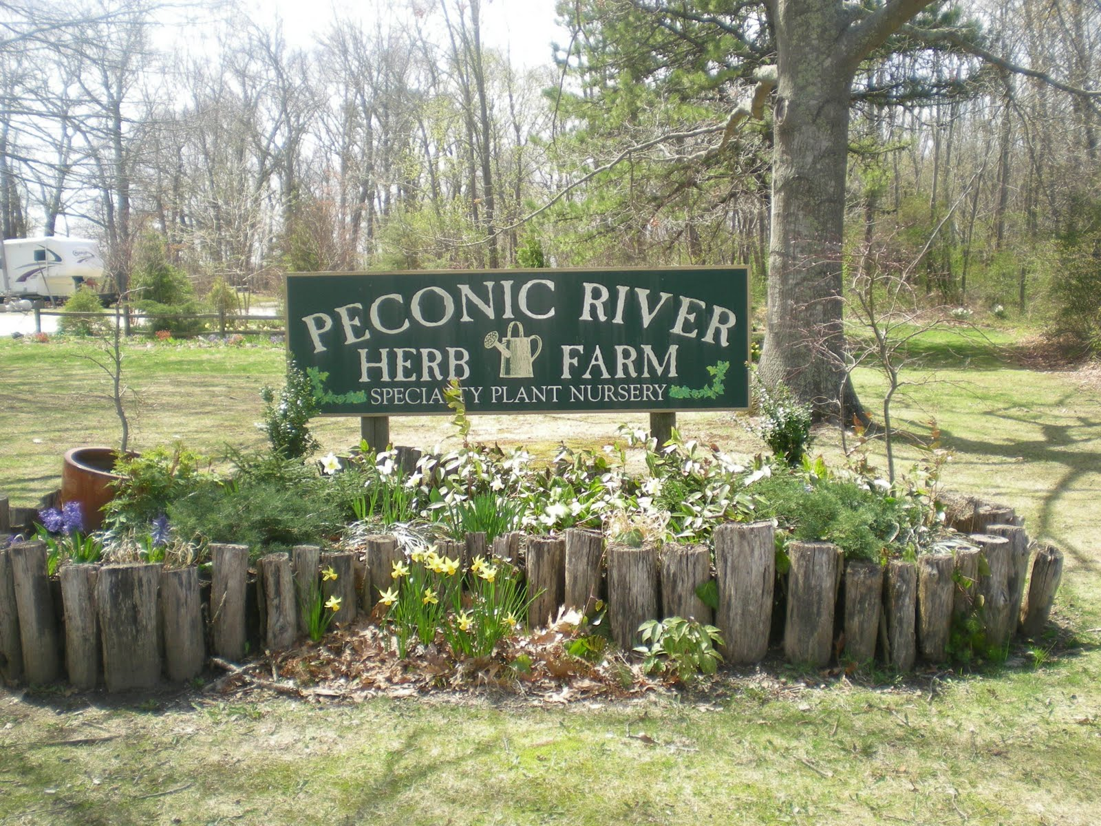 peconic women Meet single women in peconic ct online & chat in the forums dhu is a 100% free dating site to find single women in peconic.