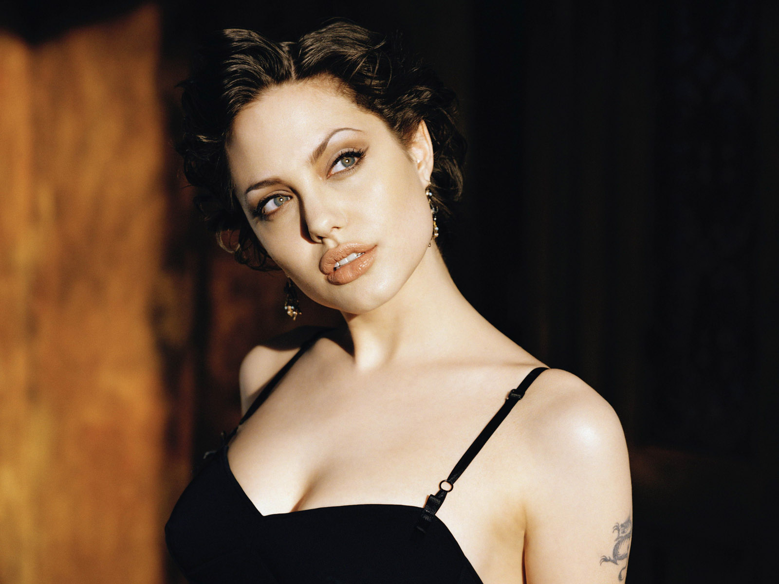 Angelina jolie wallpapers angelina jolie angelina jolie angelina jolie