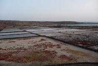 Las Salinas de Janubio