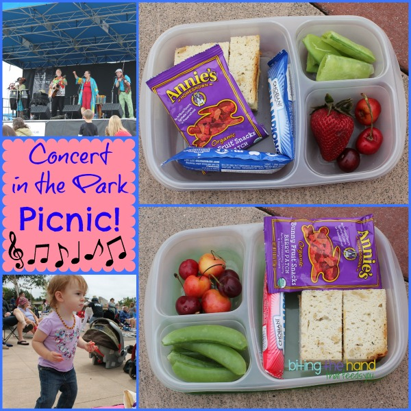 Quick and easy lunches for a summer concert in the park picnic!