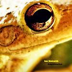 Amphibialien (2012)