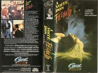 A NOITE DOS FELINOS (1989)