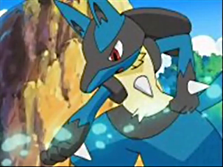 Lucario Arua Pokemon Fighting Steel dual type