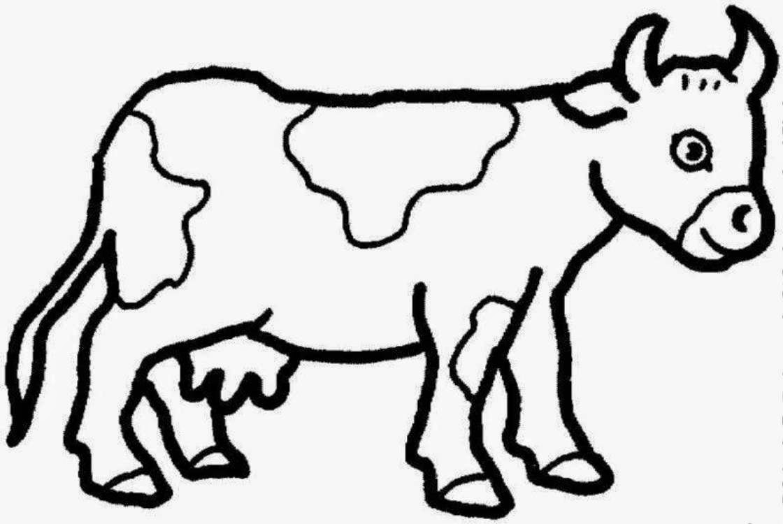 Adult Beauty Coloring Page Cow Gallery Images top cow coloring pages gallery images