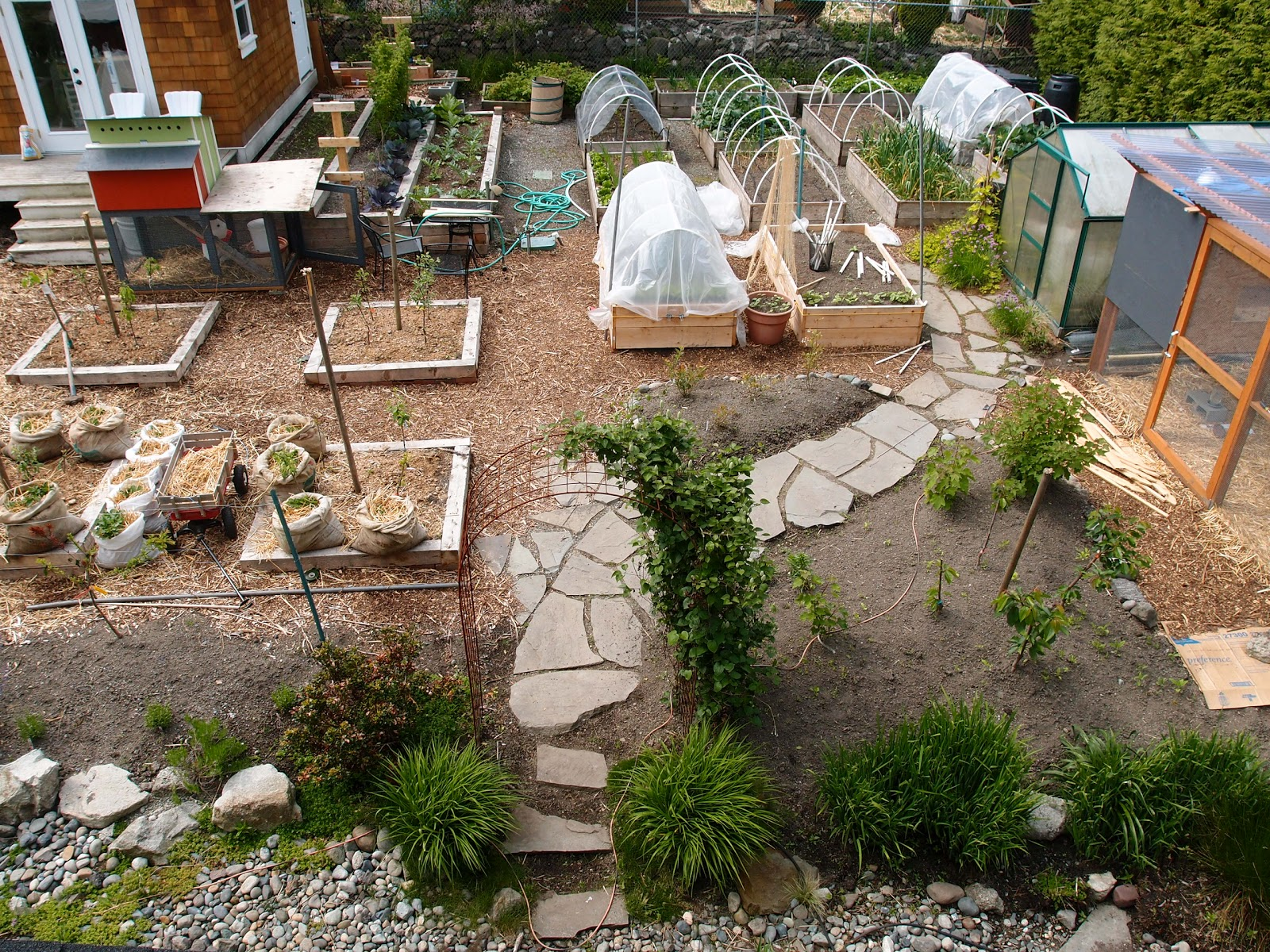 Birds Eye View: An Overview Of The Garden | Northwest Edible Life