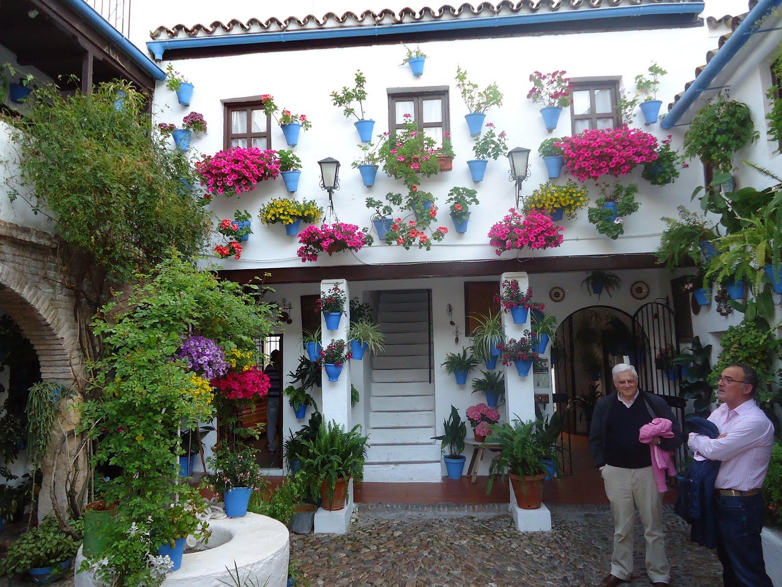 Teresa patio andaluz - Fotos patio andaluz ...