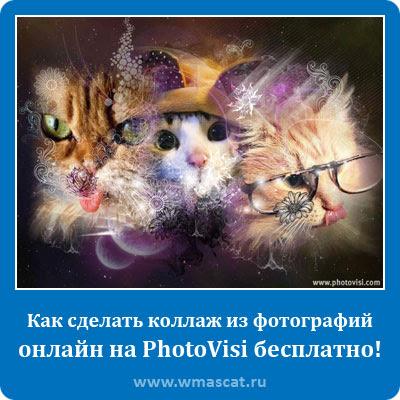 Как сделать коллаж из фотографий онлайн на PhotoVisi бесплатно!