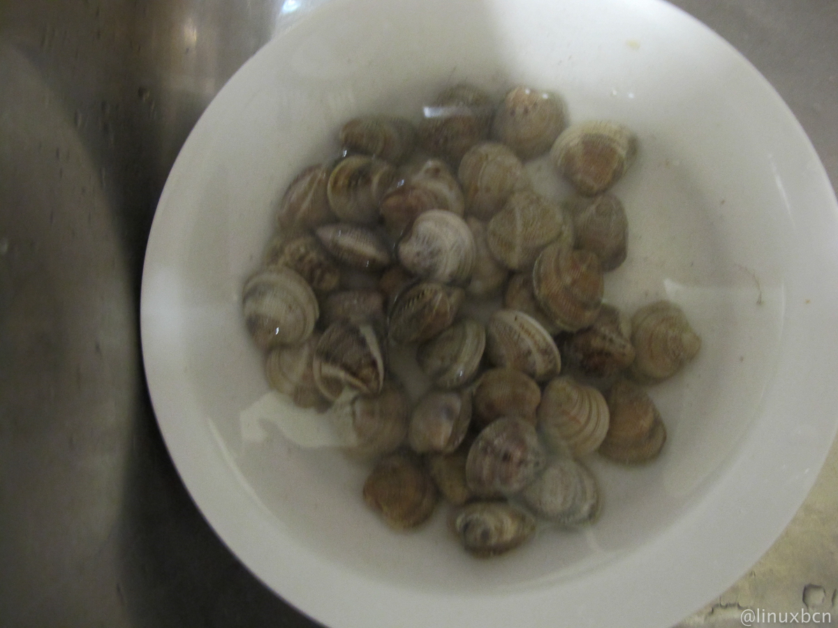 Tell me pliz What are the clam shells, herbivorous, carnivorous, parasites, corpses