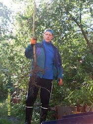 Puutarhapalvelu Tampere: Istutus- ja leikkausapuja puutarhoihinne lapiosta moottorisahaan käytössä