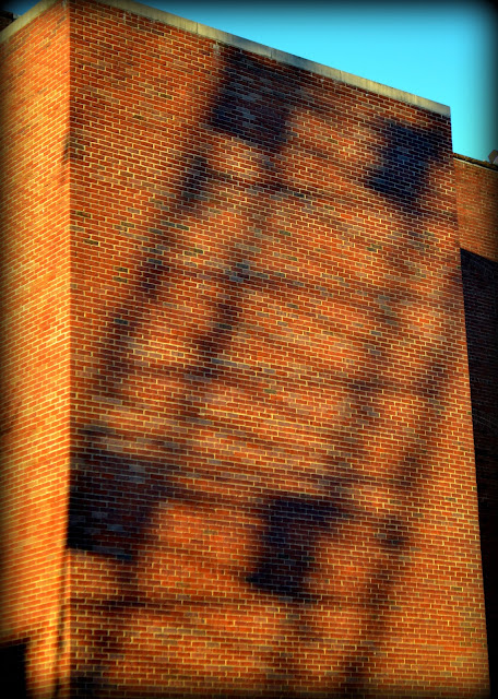 Peabody Essex Museum, Rear, Wall, Shadow, Salem, Massachusetts, crane, bricks, construction