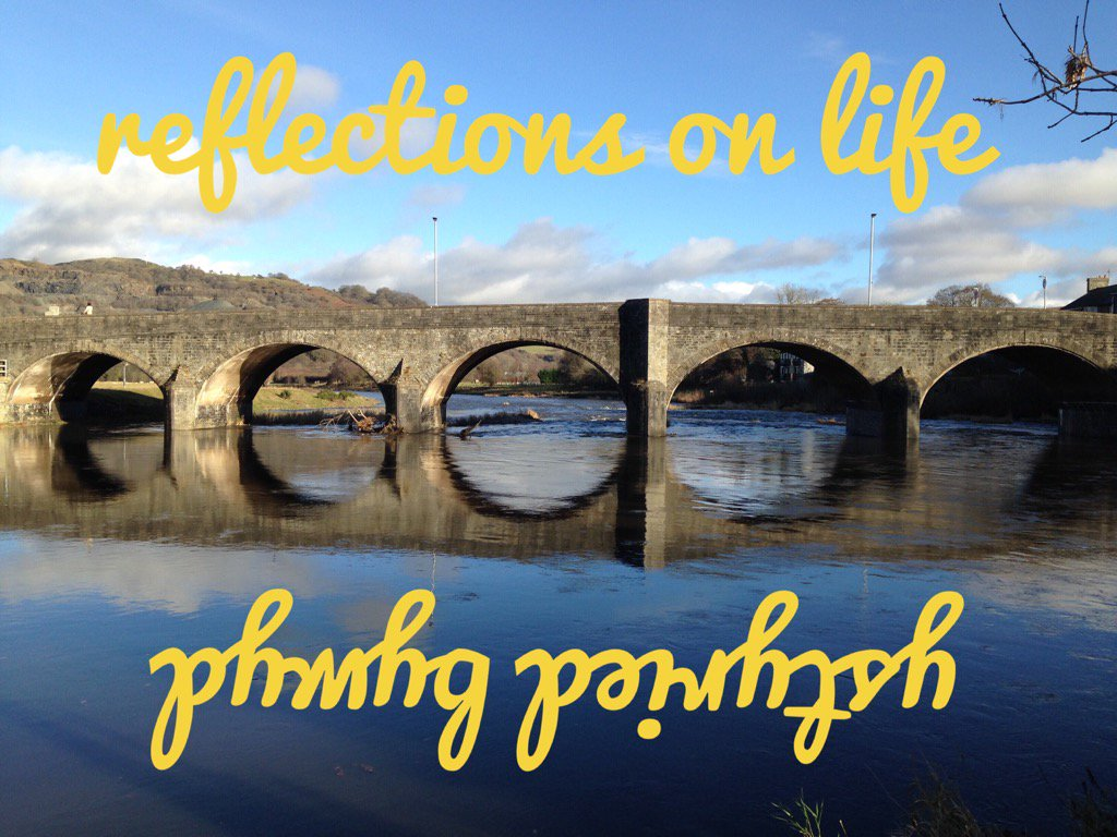 Reflections on Life