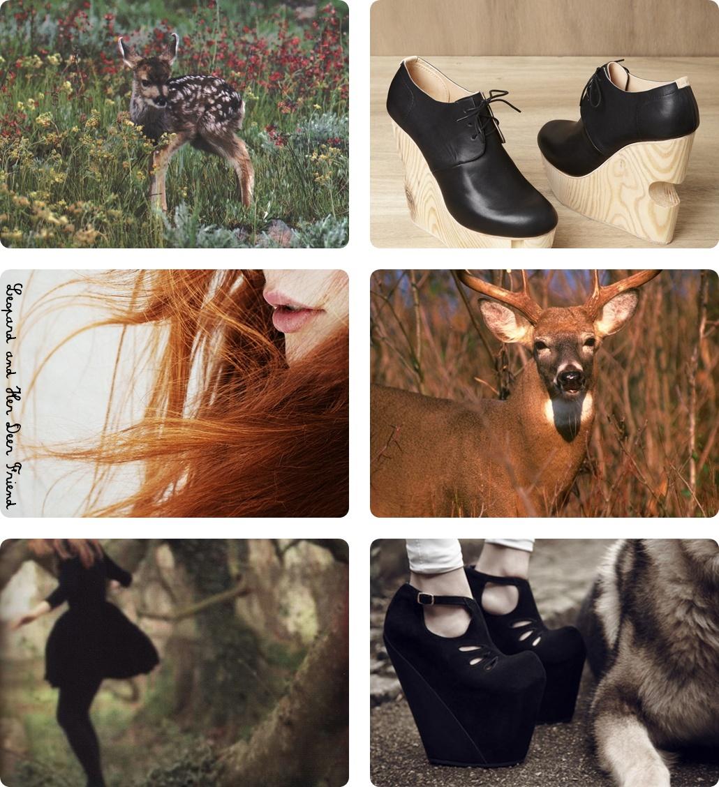 http://3.bp.blogspot.com/-11ddKUVL7f4/TyGIB625jzI/AAAAAAAAAxM/fKqRJv7Y-Sg/s1600/leopardandherdeerfriend+Stendhal+Natural+Mood+Coolhunting.jpg
