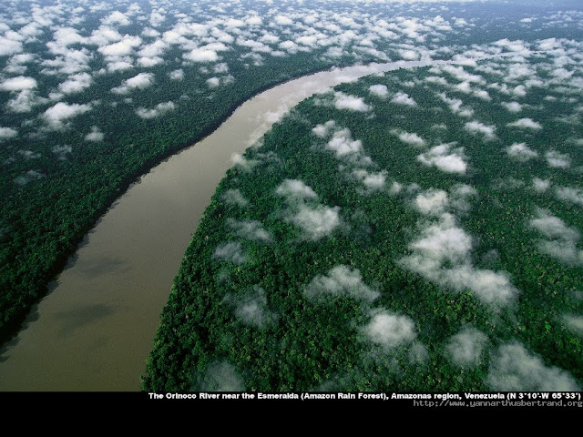 The Orinoco River near the Esmeralda ( Amazon Rain Forest ) , Amazon Region , Venezuela
