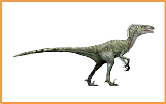 Dromaeosaurus : Dinosaurios del mundo