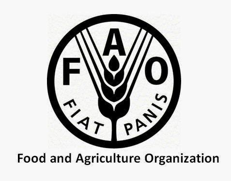 FAO: Pengertian, Tujuan, Kepanjangan FAO