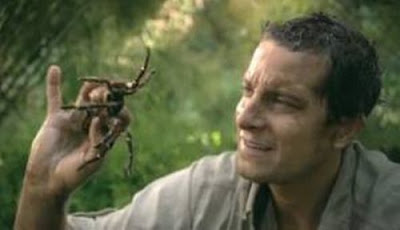 The Grossest Things Bear Grylls Has Eaten Seen On www.coolpicturegallery.us