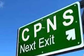 Penerimaan CPNS