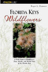 Florida Keys Wildflowers