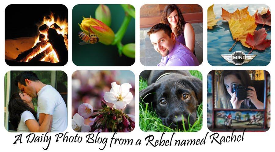 Rachel's Photograph A Day