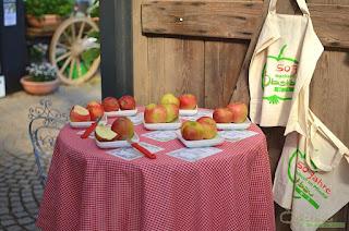 Äpfel probieren