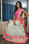 Shubra Aiyappa glamorous in half saree-thumbnail-1