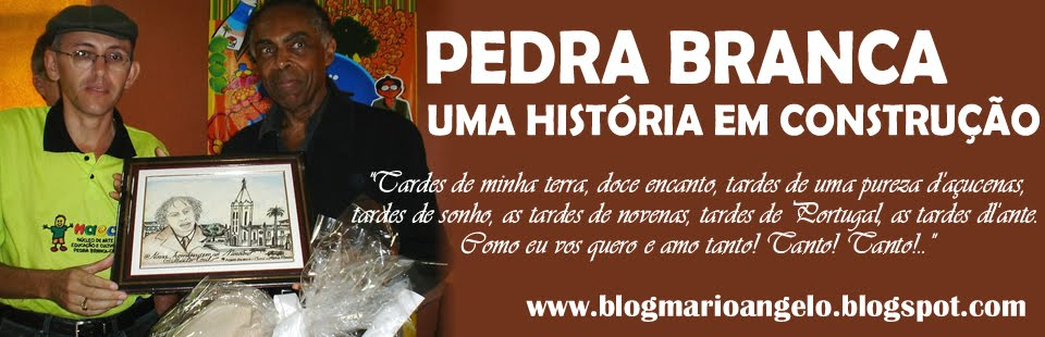 Blog do Mario Angelo