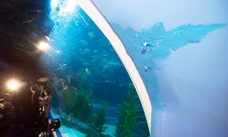 Grieta en el gran acuario de la Lotte Tower de Jamsil en Seúl