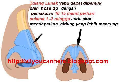 Nose Strap Asli Nose up Asli Membentuk Tulang