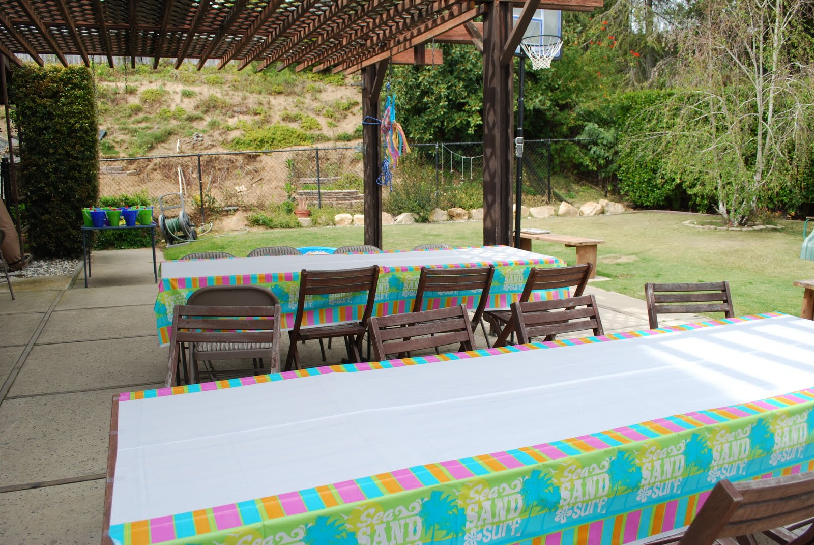 the set up we had the party in cammi 39 s backyard we set up 2